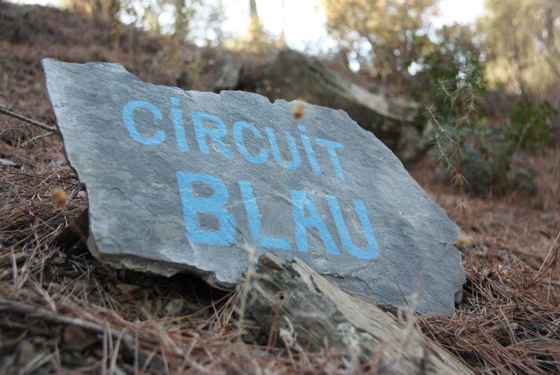 aventura-grupales-circuito-azul-vies-altes-priorat-porrera-circuit blau